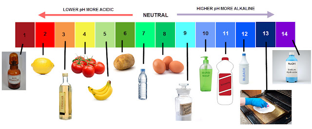 ph-balance-chart