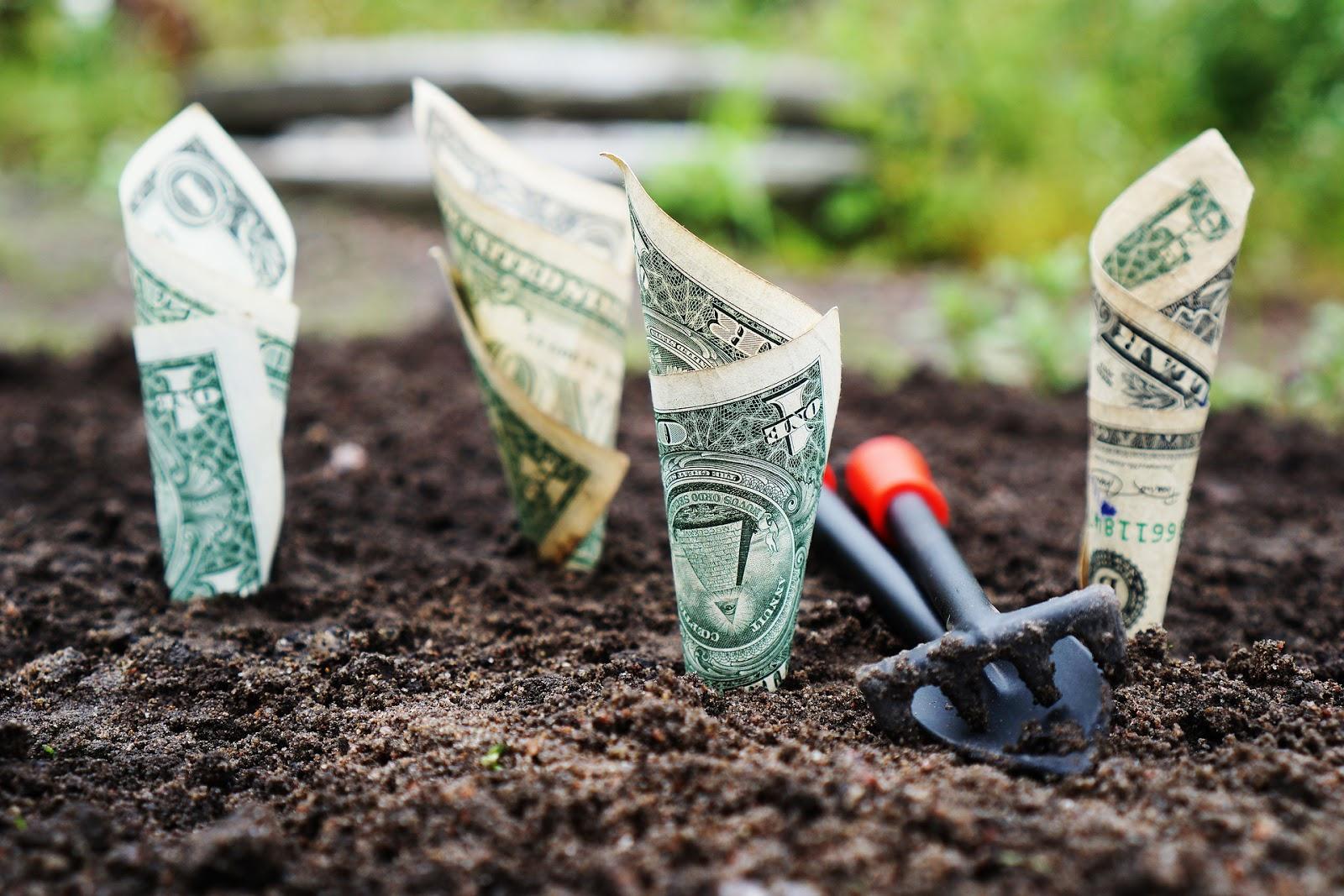 Sijoittaminen vs säästäminen - kumpi on kannattavampaa?
