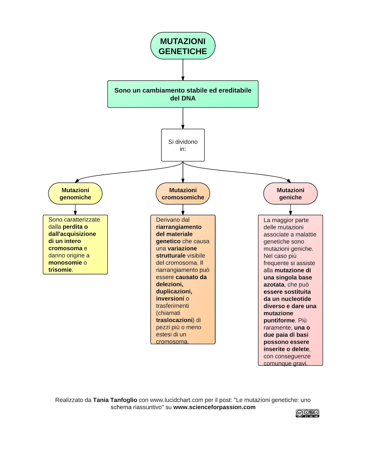 Geni e cromosomi pdf viewer