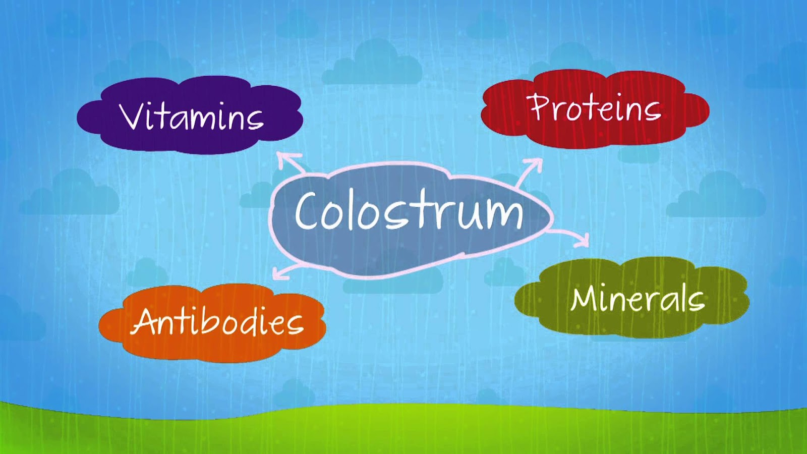 Affectional Pharmacopeia What Is Colostrum How Does It -6952