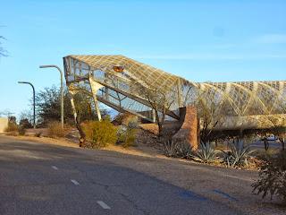 tucson arizona diamond back rattlesnake bridge