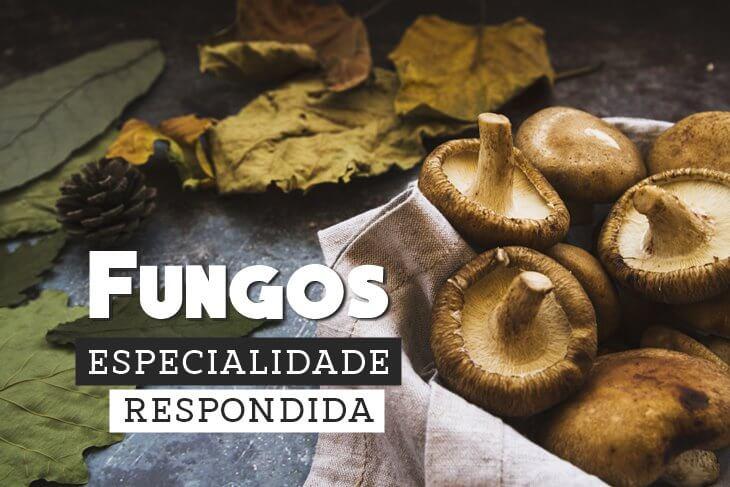 Especialidade-de-Fungos-Respondida