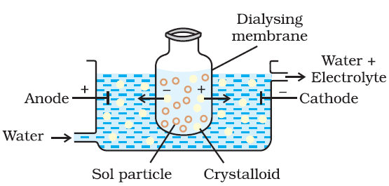 Coagulation of Colloidal Solutions