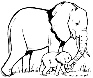 Big Elephant And Baby Elephant Coloring Page Image