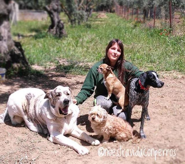nuestra vida con perros squeaky foods alimentación para perros barf acba