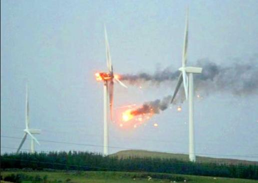 The Conservative Chronicles 24 7 Wind Farm Kills 4 In South Dakota