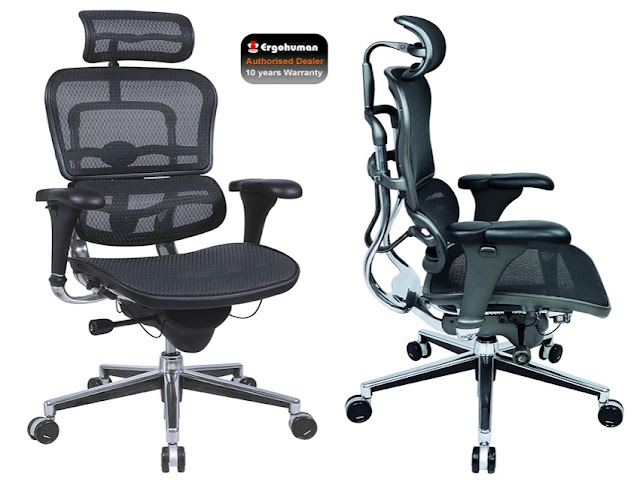 best ergonomic office chair back pain for sale online