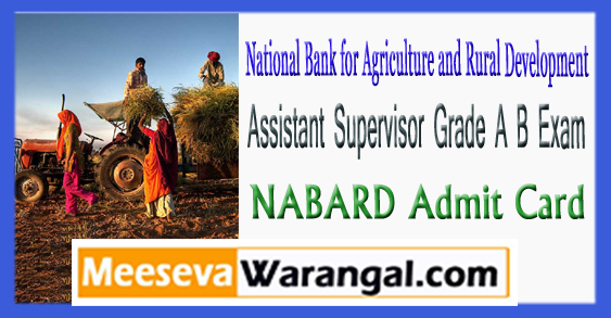 NABARD Assistant Supervisor Grade A B Exam Admit Card 2017