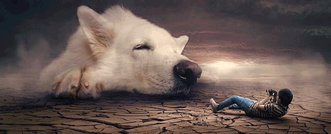 Гигантская собака