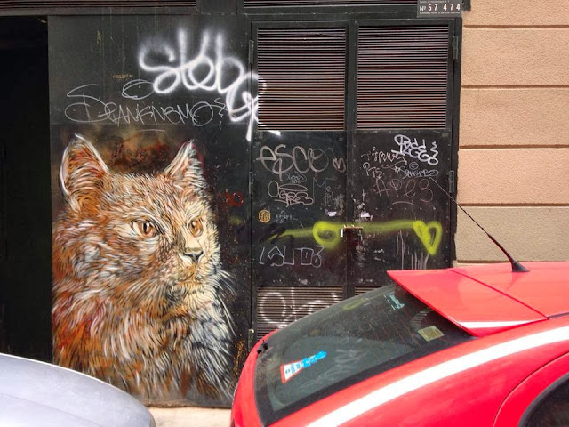 Parisian Stencil Artist C215 returns to Barcelona with a new series of Street Art Pieces. 3