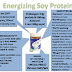 ENERGIZING SOY PROTEIN (ESP) PROTEIN BUKAN GMO