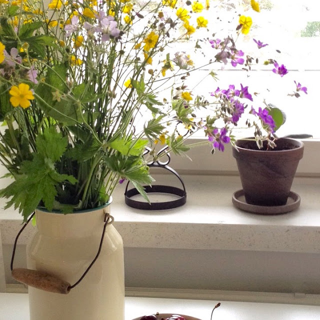 kukka, ikkunalauta