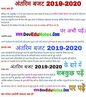अंतरिम बजट 2019-2020, Interim Budget 2019-20