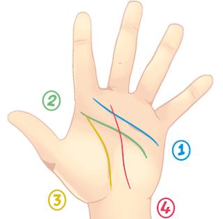 Cara Membaca Karakter Seseorang Melalui Garis Tangan (Palmistry) 1_