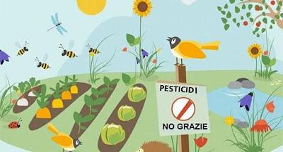 Risultati immagini per 13 maggio 2018 - Marcia contro i pesticidi