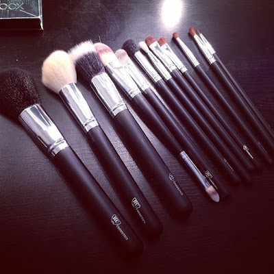 RC (Royal Care) Cosmetics - Professional 12 Piece Brush Set Review - Sigma Dupes?
