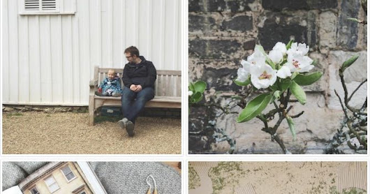 weald - UK adventures: Are we following each other on Instagram?
