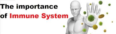 Tingkatkan Sistem Imun Badan Secara Semulajadi