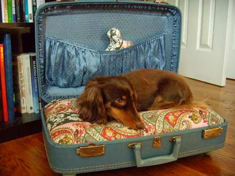 30 Awesome DIY Projects that You've Never Heard of - Suitcase Dog Bed