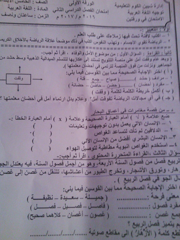 تجميع كل امتحانات اللغة العربية لجميع المحافظات الصف الخامس