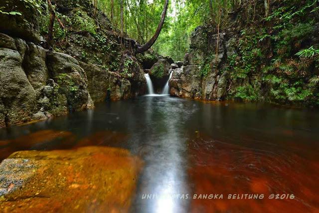 Kolam Air Jernih di Hutan Maras