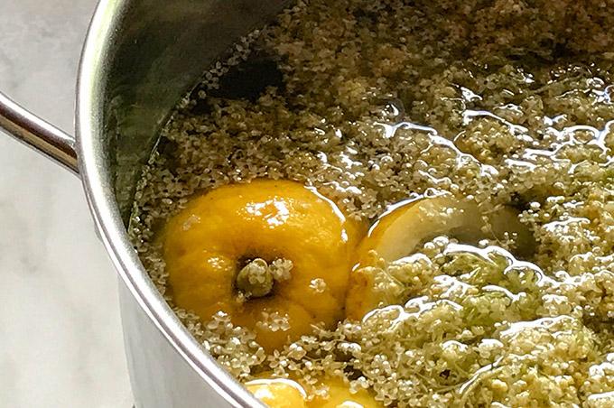 Holunder und Zitronen im Topf
