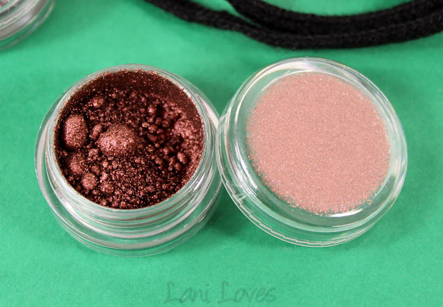 Notoriously Morbid Coffee & Contemplation Eyeshadow Swatches & Review