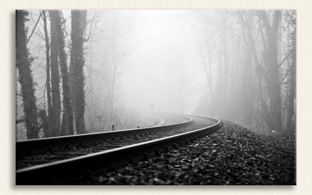 Orman içlerindeki demiryolu