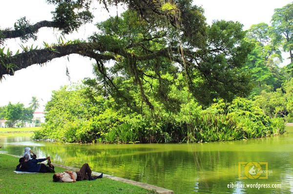 Menikmati udara sejuk dan ketenangan di Kebun Raya Bogor