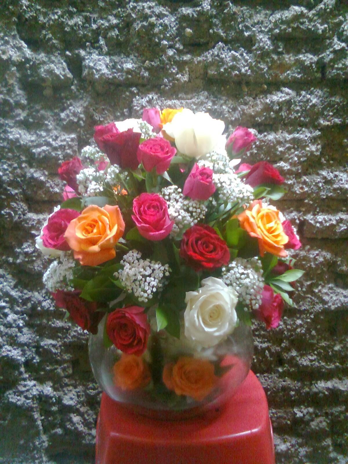 Mawar 010 Mawar 011 Mawar 012 Rp 375 000 Rp 1 200 000 Rp 900 000
