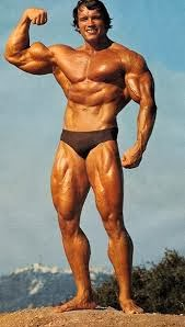 Top Bodybuilders Of All Time
