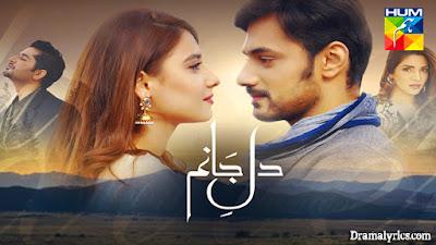 Dil-E-Janam OST Lyrics - Hina Altaf, Zahid Iftikhar | Hum TV