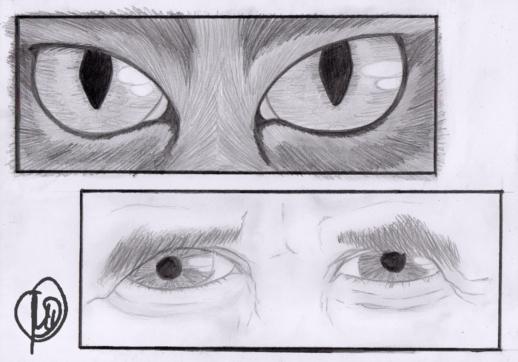 Tyrrin Hexenkater hält Blickkontakt.