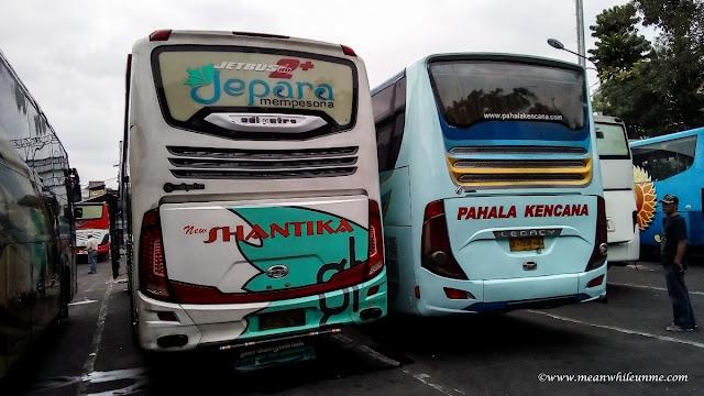 pilihan bis jurusan Bandung Pekalongan jajaran bis di Terminal Cicaheum