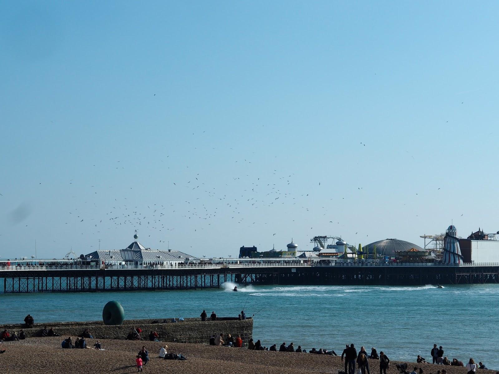 Brighton Pier & flock of birds