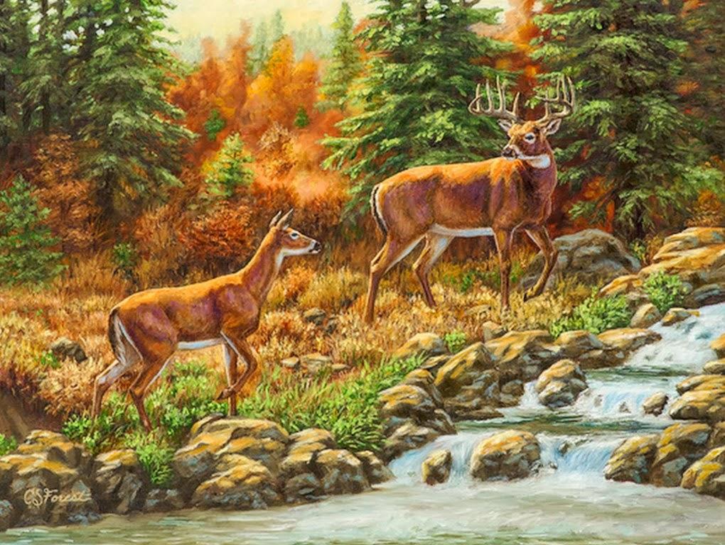 Paisajes De Animales: Imágenes Arte Pinturas: Paisajes Con Cascadas Y Animales