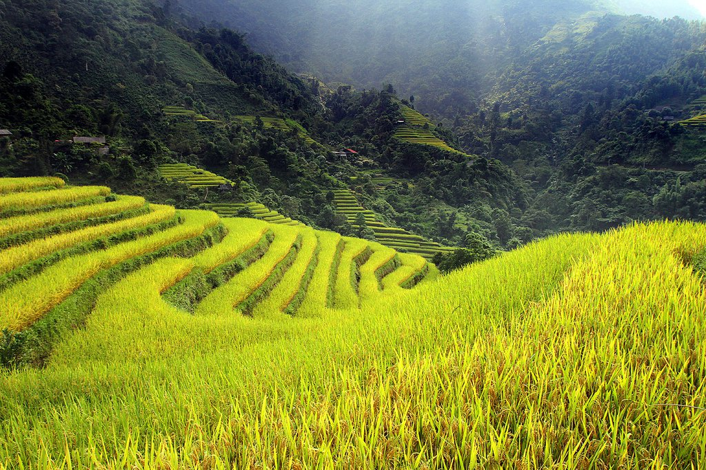 10 reasons to choose a homestay in Ha Giang