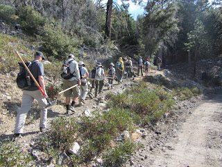 Volunteers heading up trail for Trailbuilders workday