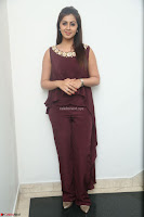 Nikki Galrani in a Brown Shining Sleeveless Gown at Nakshatram music launch ~  Exclusive 030.JPG