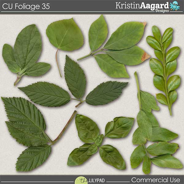 http://the-lilypad.com/store/digital-scrapbooking-cu-foliage-35.html