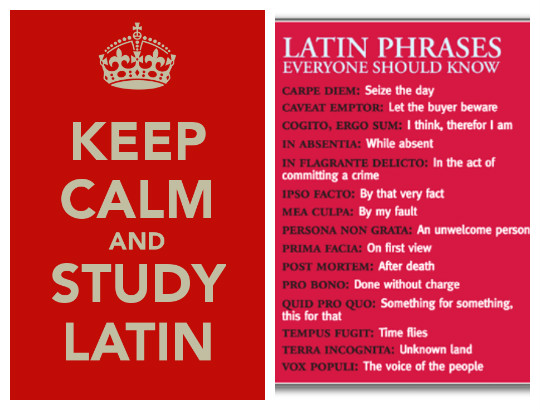 Baloogg's Blog See The Latin Phrases Everyone Should Know Best Amazing Latin Phrases