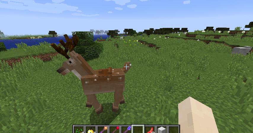 The Hackshop Reindeer Are Here New Version 158