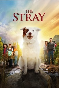Watch The Stray Online Free in HD