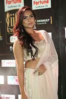 Prajna Actress in backless Cream Choli and transparent saree at IIFA Utsavam Awards 2017 0052.JPG