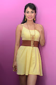 Manisha Kelkar sizzling in Yellow-thumbnail-10