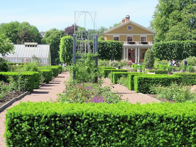 Unn deg å ta lunsjen i Trädgårdsföreningen i  Gøteborg - Roseganger med taxushekker IMG_4424