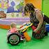 Pais criam cadeira de rodas caseira para filhinha de 2 anos (e ela amou!)