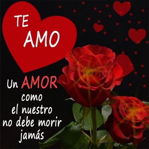 Imagenes de corazon con rosas y frases de amor
