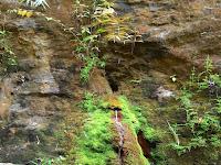 Mata Air Keramat Di Lereng Gunung Semungklung