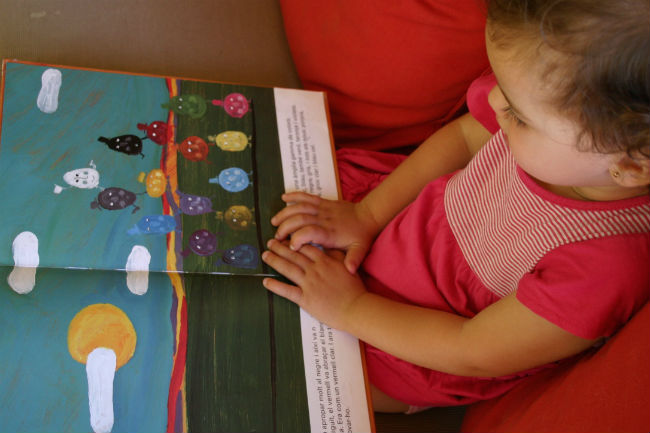 libro infantil rojo azul amarillo